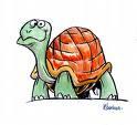 O Piquenique das Tartarugas (Trabalho em Equipe)