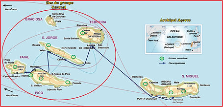 Açores_Baleines_Pico