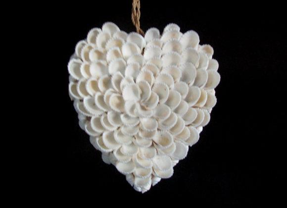 Shell heart, small.