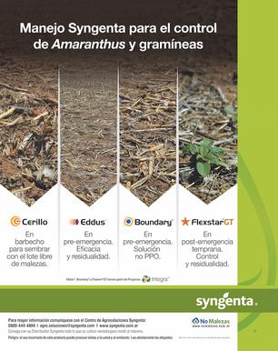 amaranthus.png