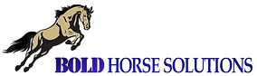 Bold%20Horse%20Solutions%20Logo_edited.p