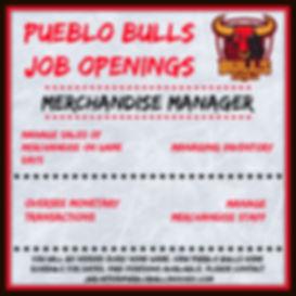 Merchandise Manager.jpg