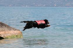 Sam am Gardasee