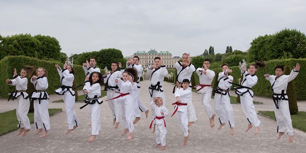 YOUNG-UNG -- Taekwondo Show
