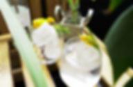 Der-perfekte-Gin-Tonic.jpg