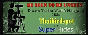 Superhide logo.webp