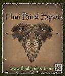 Thaibirdspot1.jpg