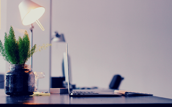 Desk with laptop, lamp and a plant