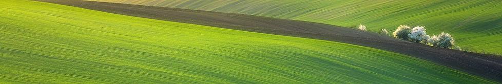 windows-field-backgrounds-background.jpg