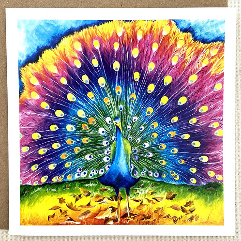 "Peacock Card 6""x6"""