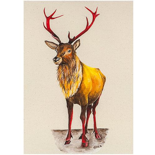 Rannoch Moor Stag Prints