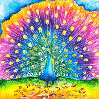 Peacock Prints