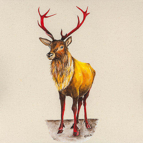 RANNOCH MOOR STAG - starting from