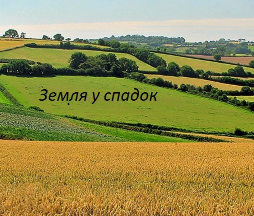 Особливості та підводні камені  спадкування землі в Україні