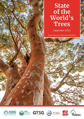 State of Tree Report_Cover.jpg