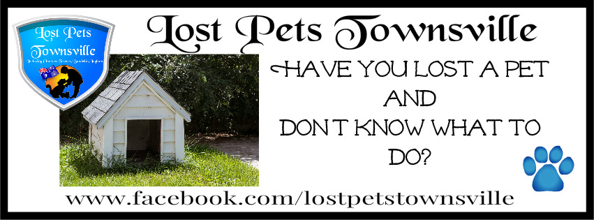 HAVE YOU LOST A PET AND DON'T KNOW WHAT TO DO