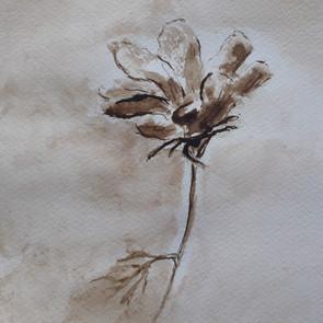 Fleur à l'encre