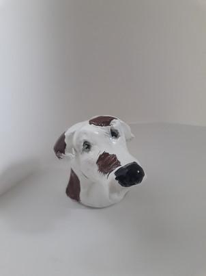 modelage chien