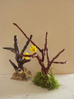 modelage arbres