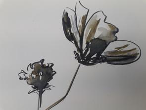 Fleurs au feutre