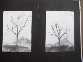arbres d'hiver fusain