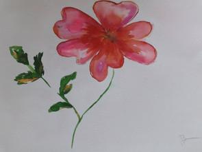 Fleur , encre coloré