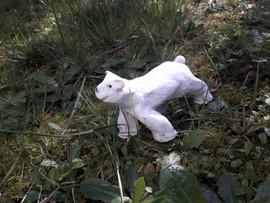 ours polaire - argile