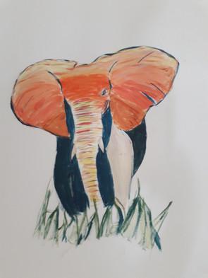 Elephant Pop Art