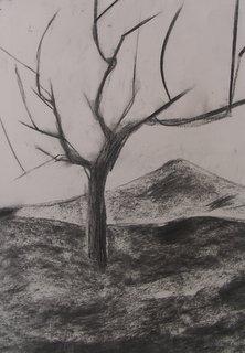 arbres d'hiver au fusain