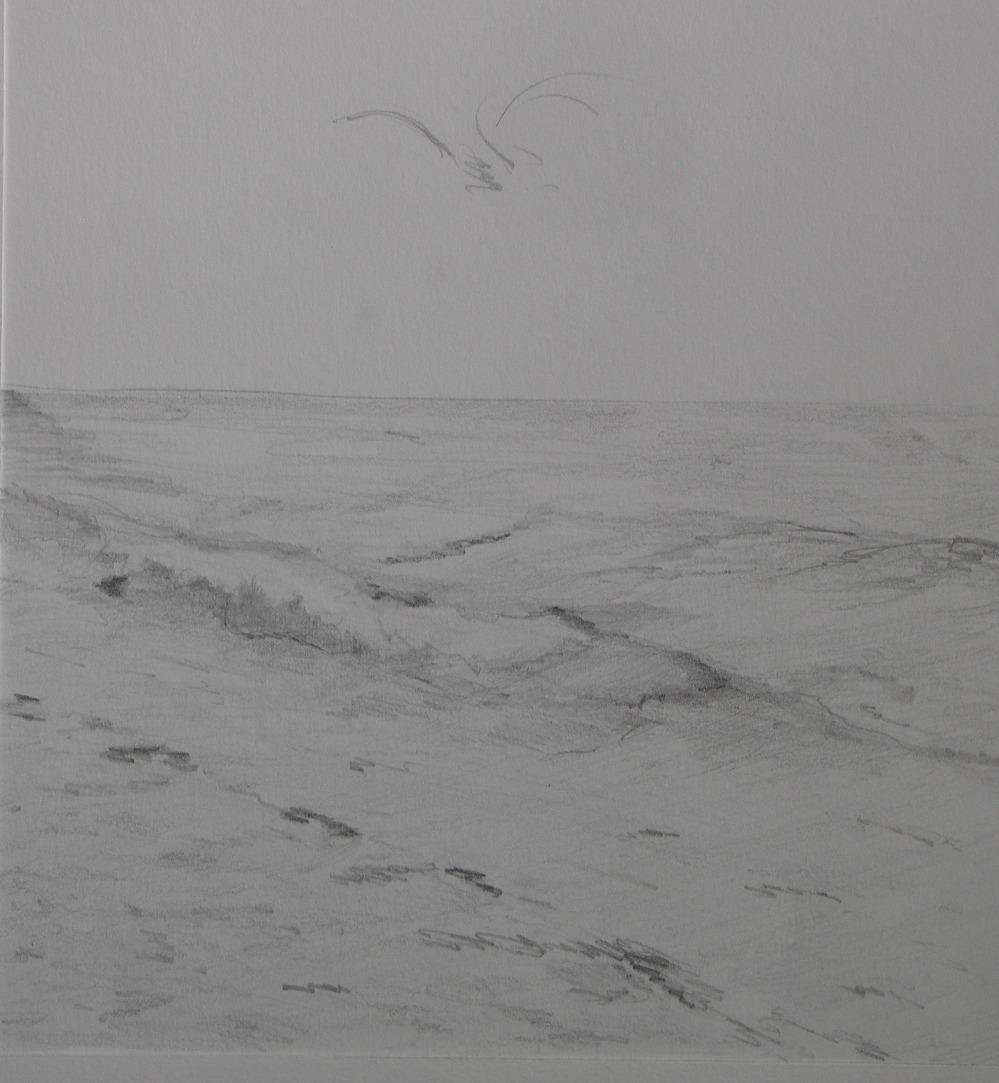 Etude de mer, crayon