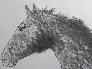 Cheval de profil au fusain