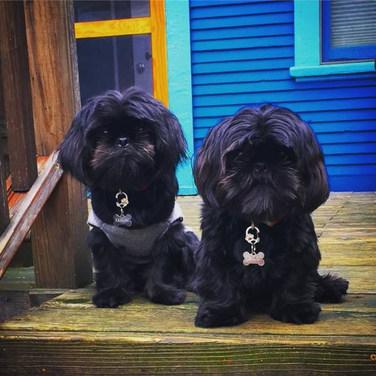 Elliot & Nucky
