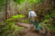 bike 1 (4).png