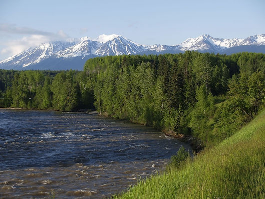 skeena river 1.jpg
