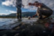 fishing_3_credits.png