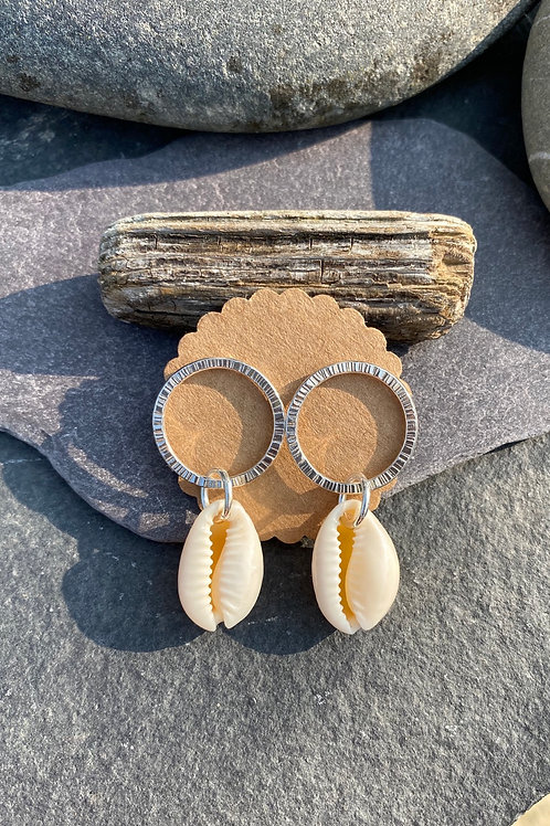 Cowrie shell drop studs