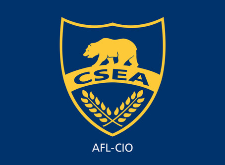 CSEA stands united in peaceful protest