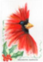 CardinalBrushyFinalWEB.jpg