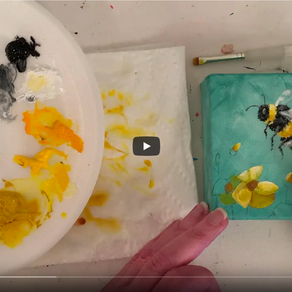 Bumblebee Time Lapse Video