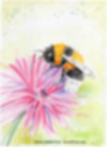 BumblebeePurpFlwrFinal copy.jpg