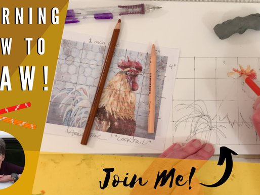 Learn How to Draw! - Gridding Tutorial!