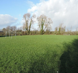 Our large school pitch