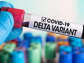 Mais 17 casos de Covid-19 na  Madeira