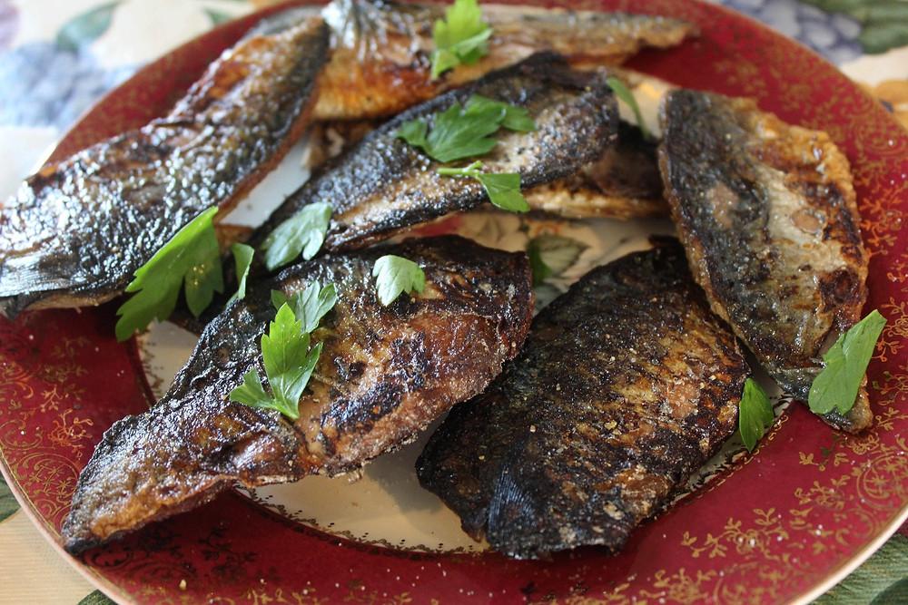 fresh mackerel all on their own