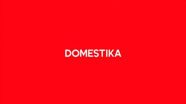 Domestika - How to create a picturebook