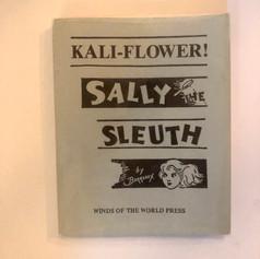 Sally The Sleuth
