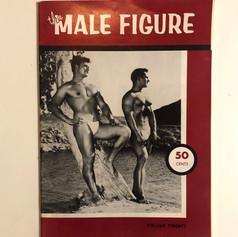 The Male Figure