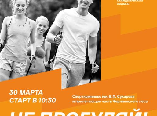 """Новая сессия """"Школы спортивного волонтёра"""""""