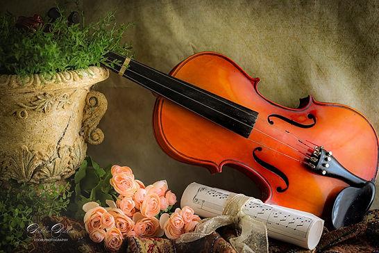 Retired Violin PS wm.jpg
