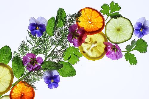 lightbox herbs & citrus-1.jpg